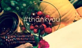 Dziękuje ciebie karciany dziękczynienie Zdjęcie Royalty Free