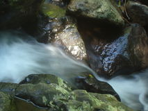 Działająca rzeka Zdjęcia Royalty Free
