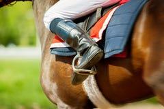 Działającego thoroughbred biegowy koń z jokey na nim w pogodnej wiośnie Zdjęcie Stock