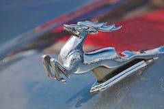Działający jeleni emblemat na kapiszonie Radziecki samochodowy Volga GAZ-21 Zdjęcie Stock