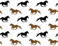 Działający konie Obraz Stock