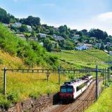 Działający pociąg przy Lavaux winnicy śladu Tarasowym wycieczkuje szwajcarem Zdjęcie Royalty Free