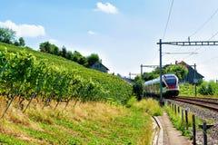 Działający pociąg przy Lavaux winnicy Tarasowym wycieczkuje śladem w szwajcarze Obrazy Royalty Free
