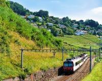 Działający pociąg w Lavaux winnicy śladu Tarasowym wycieczkuje szwajcarze Obraz Royalty Free