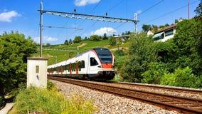Działający pociąg w Lavaux winnicy Tarasowym wycieczkuje śladzie w Szwajcaria Obrazy Royalty Free