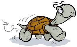 Działający tortoise Obraz Royalty Free