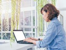 działanie laptopa kobiety obrazy royalty free