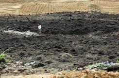 działka, zakrywająca z mszarnikiem któremu kopią out ziemskiego ekskawator w przygotowaniu do budowy droga, Teren ex Fotografia Stock