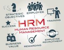 Działu zasobów ludzkich zarządzanie, HRM Zdjęcie Stock