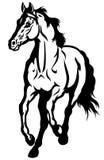Działający koński czarny biel Obraz Stock