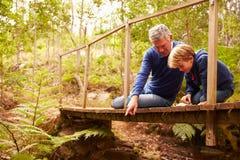 Dziad bawić się z wnukiem na moscie w lesie zdjęcia stock