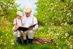 Dziadek czytanie książka jego wnuk w kwitnienie ogródzie, Fotografia Royalty Free