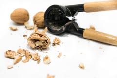 Dziadek do orzechów, orzecha włoskiego nasiona nutshells na białym tle, strugający i cali, obrazy stock