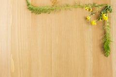 Dzicy łąka kwiaty układający jak ramę na drewnianym tle Odgórny widok Mieszkanie nieatutowy Odbitkowa przestrzeń dla teksta Obrazy Royalty Free
