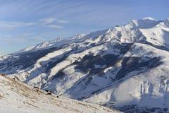 Dzicy konie pasają przy stopą góra na Pogodnej zimie fotografia stock