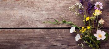 Dzicy kwiaty na starego grunge tła drewnianego chamomile dandelions lupine macierzance wybijają monety dzwony fotografia royalty free