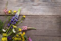 Dzicy kwiaty na starego grunge tła chamomile lupine drewnianym d Fotografia Royalty Free