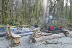 Dzicy lokatorzy wyrzucać na brzeg campsite z ogieniem Zdjęcia Royalty Free
