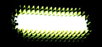 Dzicy neons Obrazy Stock