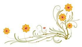 dzicy pomarańczowi kwiatów winogrady royalty ilustracja