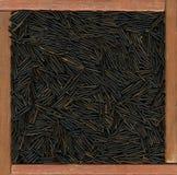 dzicy tło ryż Obraz Stock
