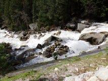 Dzicy wodni gwałtowni - Yosemite park narodowy, sierra Nevada, Kalifornia fotografia stock