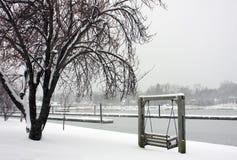 dzień śniegu zdjęcia stock