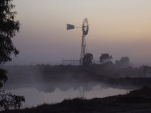 dzień australijska mgła. Zdjęcia Stock