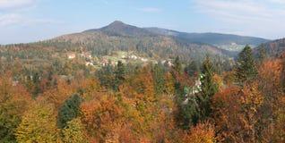 dzień dobry jesieni Zdjęcie Stock