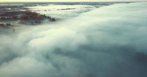 dzień dobry mgła zbiory