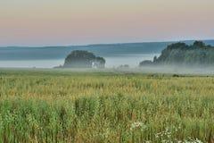 dzień dobry mgła fotografia stock
