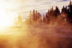 dzień dobry mgła Obraz Royalty Free