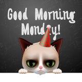Dzień dobry Poniedziałek z ślicznym gderliwym kotem, Zdjęcie Royalty Free