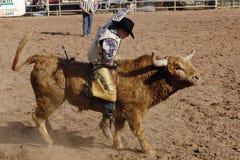 dzień dutchman przegrany rodeo zdjęcia stock