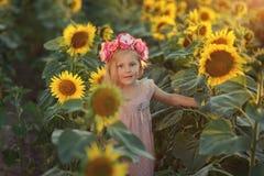 dzień dziewczyny lato słoneczniki pogodni Zdjęcia Royalty Free