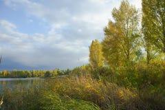 dzień lasu krajobraz pogodny Jezioro, trzcina, drzewa i dramatyczny chmurny niebo, Jesień spokojny dzień na jeziorze obrazy stock