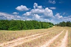dzień lato gorący krajobrazowy Obrazy Stock