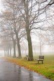 dzień mgłowy zdjęcie royalty free