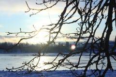 dzień piękna zima Śnieg na banku rzeka Obrazy Stock