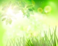 dzień pogodny ogrodowy również zwrócić corel ilustracji wektora royalty ilustracja