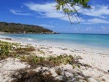 Dzień przy wyspy plażą Obraz Stock