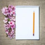 dzień serc ilustracja odizolowywał miłości romansowego s valentine biel Czuły list miłosny Fotografia Royalty Free