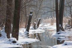 dzień spływania krajobrazu rzeczna pogodna zima Fotografia Stock