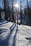 dzień zima Zdjęcia Royalty Free
