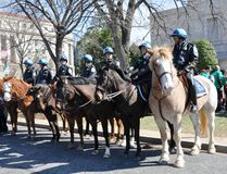 dzień dc parady Patrick s st Washington Zdjęcia Royalty Free