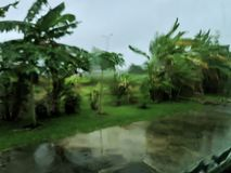 dzień deszcz zdjęcia stock