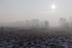 dzień dobry zimy zimna zdjęcia royalty free