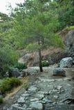 dzień footpath czasu do sunny mountain zimy Zdjęcia Royalty Free