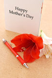 dzień karciana matka s Obraz Royalty Free