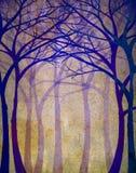 dzień lasu krajobraz pogodny Zdjęcia Royalty Free